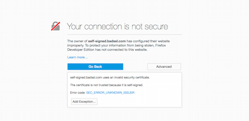 Your Connection is not Secure Advanced page